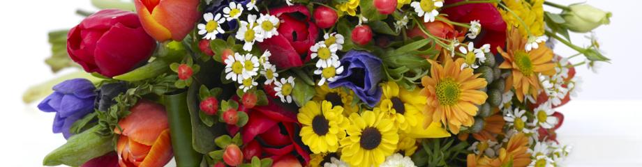 Fleurs & Nature fleuriste Saintes, 17100